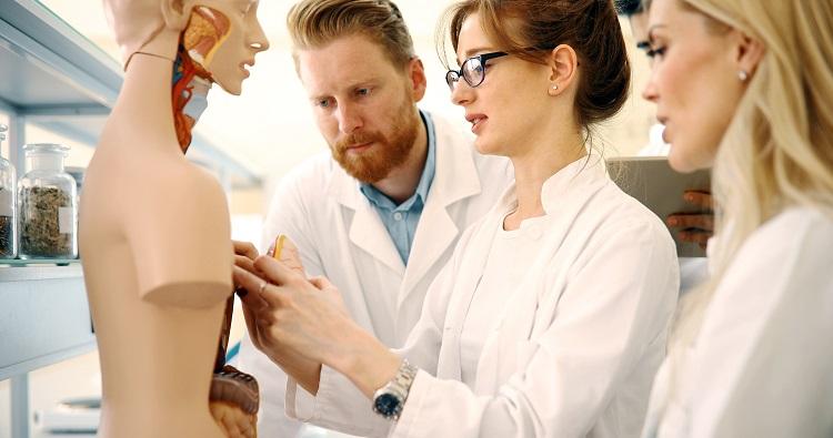 Neuregelung der Studienplatzvergabe in medizinischen Studiengängen